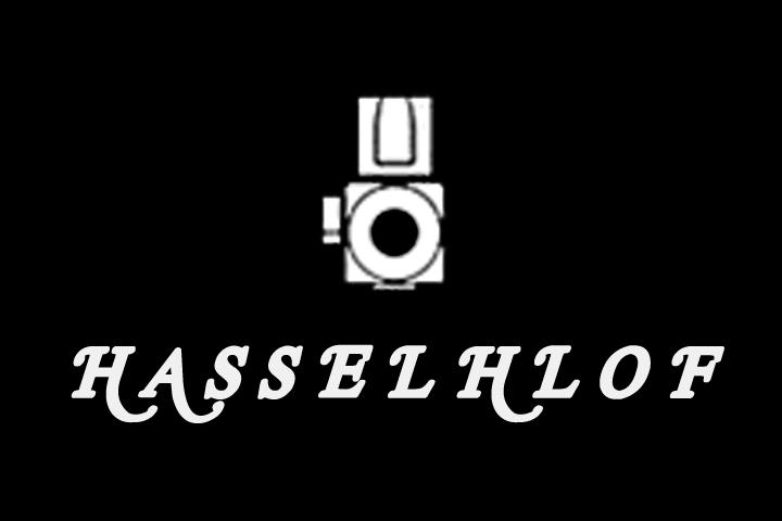 hasselhlof-logo-block